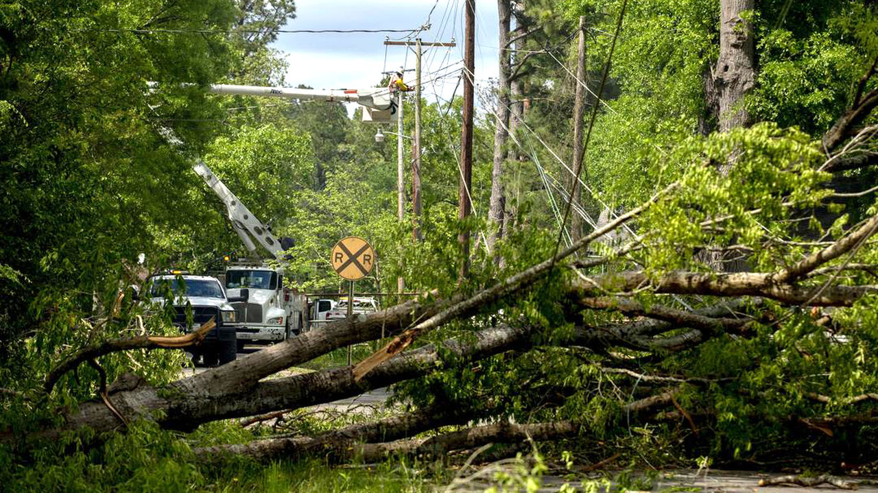 Much of the work involves removing huge fallen trees, then repairing the damage they caused.