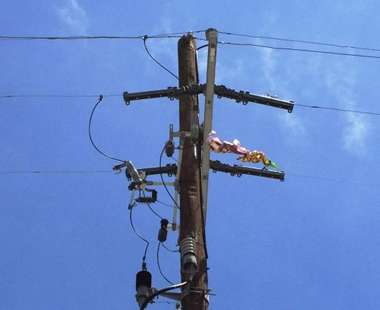 Mylar Balloons Can Cause Power Outages | Entergy Newsroom